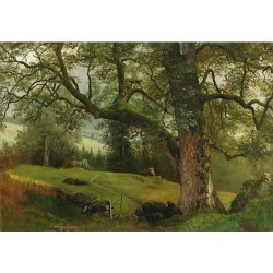 Albert Bierstadt, A Trail through the Trees found on Bargain Bro from 1stDibs for USD $323,000.00