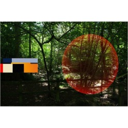 Francisco Nicol�s, Forest - Contemporary, Abstract, Minimalism, Modern, Surrealist, Landscape, 2014 found on Bargain Bro India from 1stDibs for $185.60