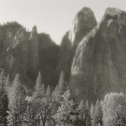 MAE Curates, Photography - California landscapes and abstracts - Silver gelatin prints found on Bargain Bro India from 1stDibs for $3800.00