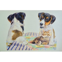 Debbie Allwright, Jack Russell Puppies seated with a Kitten, 1993 found on Bargain Bro Philippines from 1stDibs for $2450.00