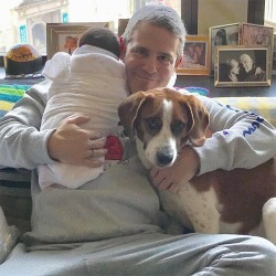 Andy Cohen Fires Back at Judgy as F--k Critics After Dog Destroys His Son's Toy found on Bargain Bro from  for $1015814
