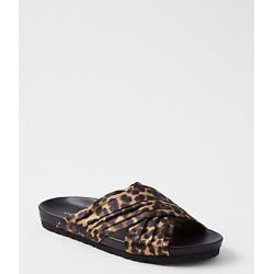 Ann Taylor Riley Leopard Print Flat Slide Sandals found on Bargain Bro India from anntaylor.com for $98.00