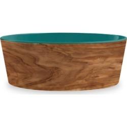 TarHong Olive Pet Bowl, Medium, Teal, 6