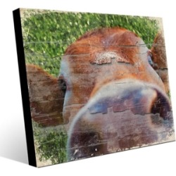 Close Up Cow Alpha 11X14 Metal Wall Art, Green/Brown found on Bargain Bro India from Ashley Furniture for $104.99