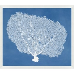 Giclee Coral Blue Wall Art, Blue found on Bargain Bro India from Ashley Furniture for $118.99