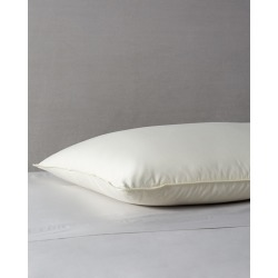 Belle Epoque Delight Soft Fill Down Pillow found on Bargain Bro India from Ruelala for $114.99