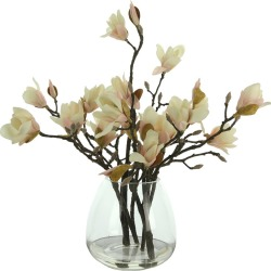 Creative Displays Magnolia Branches in Glass Vase found on Bargain Bro India from Gilt for $103.00
