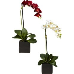 Nearly Natural Set of 2 Phalaenopsis Orchid with Black Vase Silk Arrangement