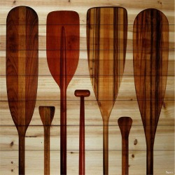 Parvez Taj Paddles Paint