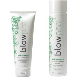 blowpro Hair Care 2-Piece Hydraquench Duo Set with Daily Shampoo and  Conditioner