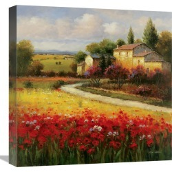 Global Gallery Tuscan Summer by Ben Harris found on Bargain Bro India from Gilt for $199.99