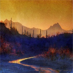Marmont Hill Sunset Saguaros Stream found on Bargain Bro Philippines from Gilt for $29.99