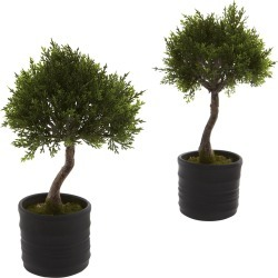 Nearly Natural Set of 2 Cedar Bonsai with Planter