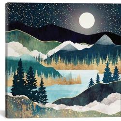 iCanvas Star Lake by SpaceFrog Designs