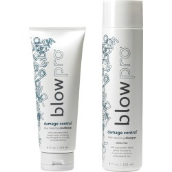 blowpro Hair Care 2-Piece Damage Control Set with Daily Shampoo and  Conditioner