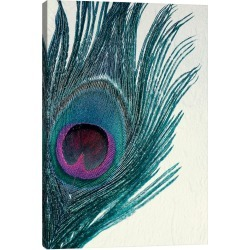 iCanvas Feather Canvas Art found on Bargain Bro Philippines from Ruelala for $25.99