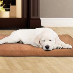 Petmaker Petmaker Foam Pet Bed