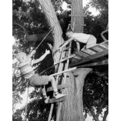 Posterazzi SAL2557724 Low Angle View of Two Boys Playing in a Tree House Poster Print - 18 x 24 in.