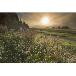 Posterazzi DPI12291262 Sun Shines Through Morning Fog Near Silver Salmon Creek in Lake Clark National Park & Preserve Alaska. Poster Print by Carl.