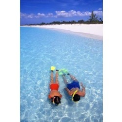 Snorkeling in the blue waters of the Bahamas Poster Print by Greg Johnston (24 x 35)