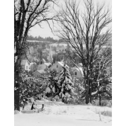 Posterazzi SAL255421613 USA New Hampshire Village of Whitefield Through Elm Trees Poster Print - 18 x 24 in.