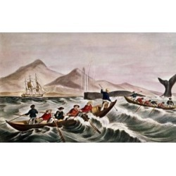 Posterazzi SAL900127863 The Whale Fishery Layin on Currier & Ives Active 1857-1907 American Poster Print - 18 x 24 in. found on Bargain Bro Philippines from Newegg Canada for $53.76