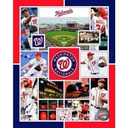 Posterazzi PFSAARU11701 Washington Nationals 2015 Team Composite Sports Photo - 8 x 10 in.