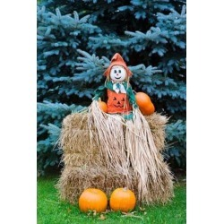 Posterazzi PDDUS50BJA0009 Wisconsin Autumn Haystack Halloween Decorations Poster Print by Jaynes Gallery - 18 x 26 in.