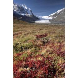 Posterazzi DPI1837160 Columbia Icefield Jasper National Park Alberta Canada Poster Print, 11 x 17