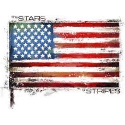 Posterazzi PALMACSTU135366 Stars & Stripes Poster Print by the Macneil Studio - 28 x 22 in.