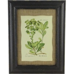 16.5' Botanic Beauty Decorative Euphorbia Amygdaloides Print with Burlap Accent Framed Wall Art found on Bargain Bro India from Newegg Canada for $37.32