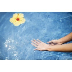 Posterazzi DPI12304390 Dipping Hands in The Water with A Floating Flower - Island of Hawaii United States of America Poster Print by Judi Angel, 19.