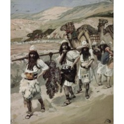 Posterazzi SAL999129 The Grapes of Canaan James Tissot 1836-1902 French Jewish Museum New York USA Poster Print - 18 x 24 in.