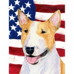 Carolines Treasures SS4023GF 11 x 15 in. USA American Flag with Bull Terrier Garden Size Flag