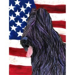 Carolines Treasures SS4052GF 11 x 15 in. USA American Flag with Briard Garden Size Flag