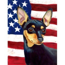Carolines Treasures LH9004GF 11 x 15 In. Usa American Flag With Min Pin Flag, Garden Size