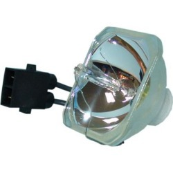 Lutema Economy for Epson EX71 Projector Lamp (Bulb Only) found on Bargain Bro India from Newegg Business for $49.99