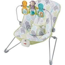 Fisher-Price Baby's Bouncer Baby Gear