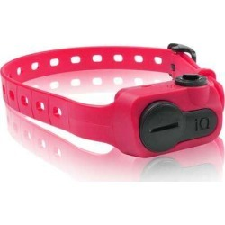 Dogtra is No Bark Collar Pink - IQ-BARK-PNK found on Bargain Bro Philippines from Newegg Canada for $108.60