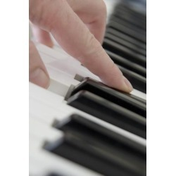 Posterazzi DPI1828447 Close Up of Finger Playing Piano Keyboard Poster Print by John Short, 11 x 17