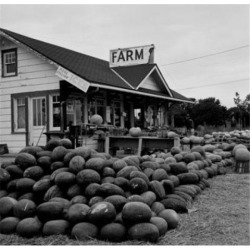 Posterazzi SAL255422027 Farmers Market for Fruit & Vegetables Poster Print - 18 x 24 in.