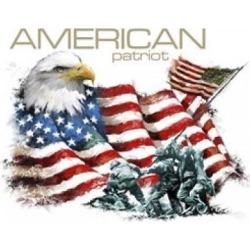 Posterazzi PALMACSTU135367 American Patriot Poster Print by the Macneil Studio - 20 x 16 in.