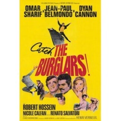 The Burglars Movie Poster (27 x 40)