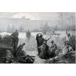 Posterazzi SAL9001188 Ark Returns the Dore Gustave 1832-1883 French Poster Print - 18 x 24 in.