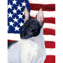 Carolines Treasures SS4054GF 11 x 15 in. USA American Flag with Rat Terrier Garden Size Flag