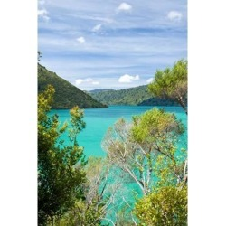 Posterazzi PDDAU02FNO0197 New Zealand South Island Marlborough Nydia Bay Poster Print by Fredrik Norrsell - 18 x 26 in.
