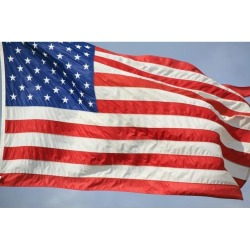 Posterazzi DPI1870527 The Flag of the United States of America Poster Print, 18 x 12
