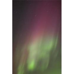 Posterazzi DPI1771361 Northern Lights Edmonton Alberta Canada Poster Print by Carson Ganci, 11 x 17
