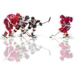 Posterazzi PALMACSTU132188 Ice Hockey 1 Poster Print by the Macneil Studio - 36 x 24 in.