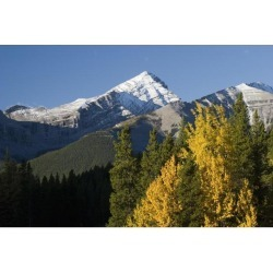 Posterazzi DPI1890963 Autumn Colors In The Rocky Mountains - Alberta, Canada Poster Print, 19 x 12